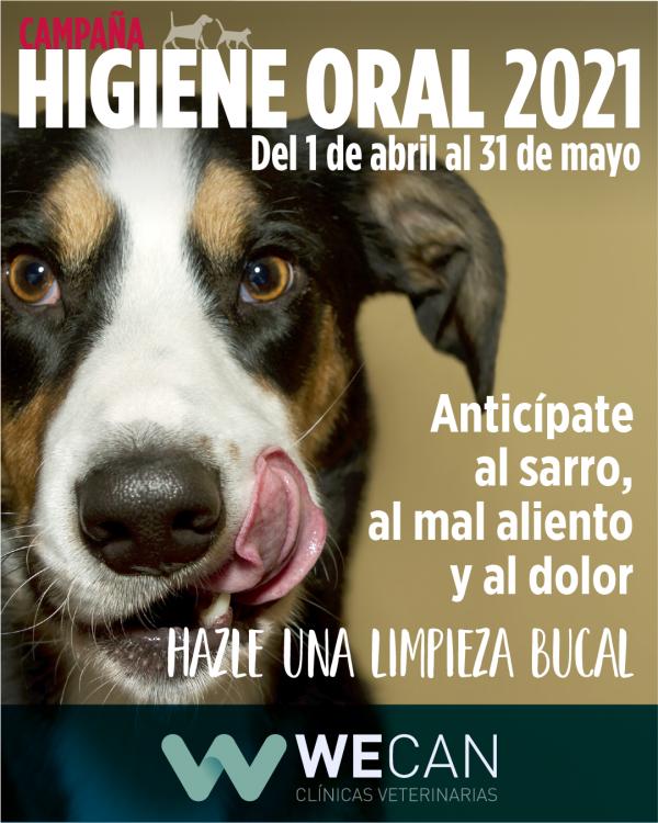 Campaña Higiene Oral